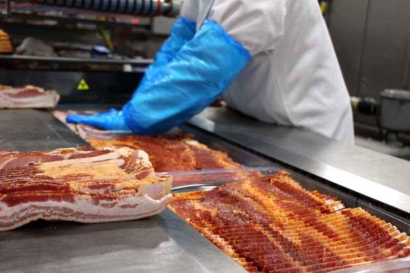Bacon-0013-800x533px
