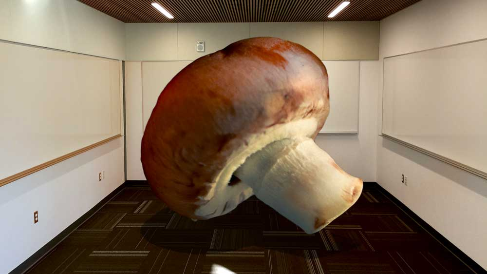 MushroomRoom-1000x562px