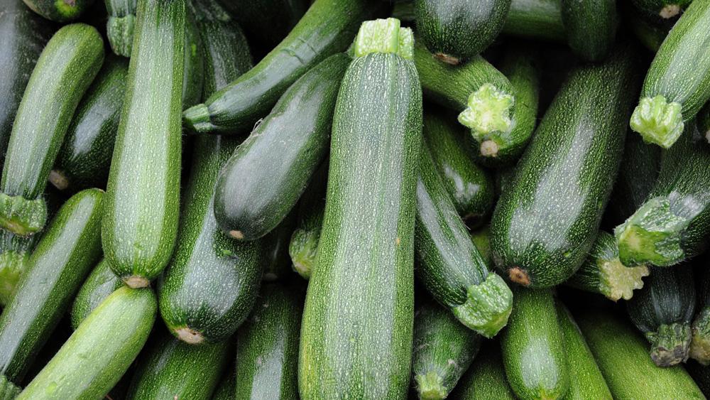 zucchini-stock
